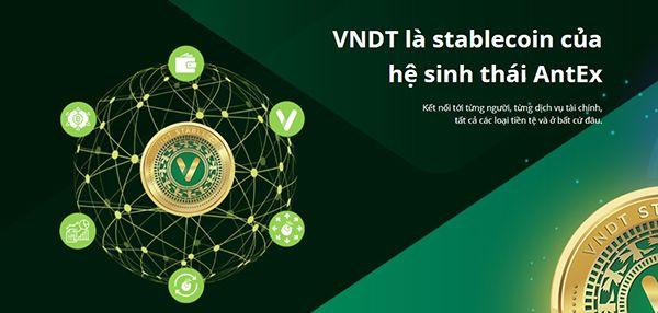 vi-vndt-la-gi-huong-dan-vndt-01